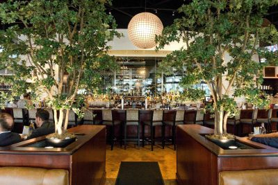 Valentine's Day at City Cellar Wine Bar & Grill