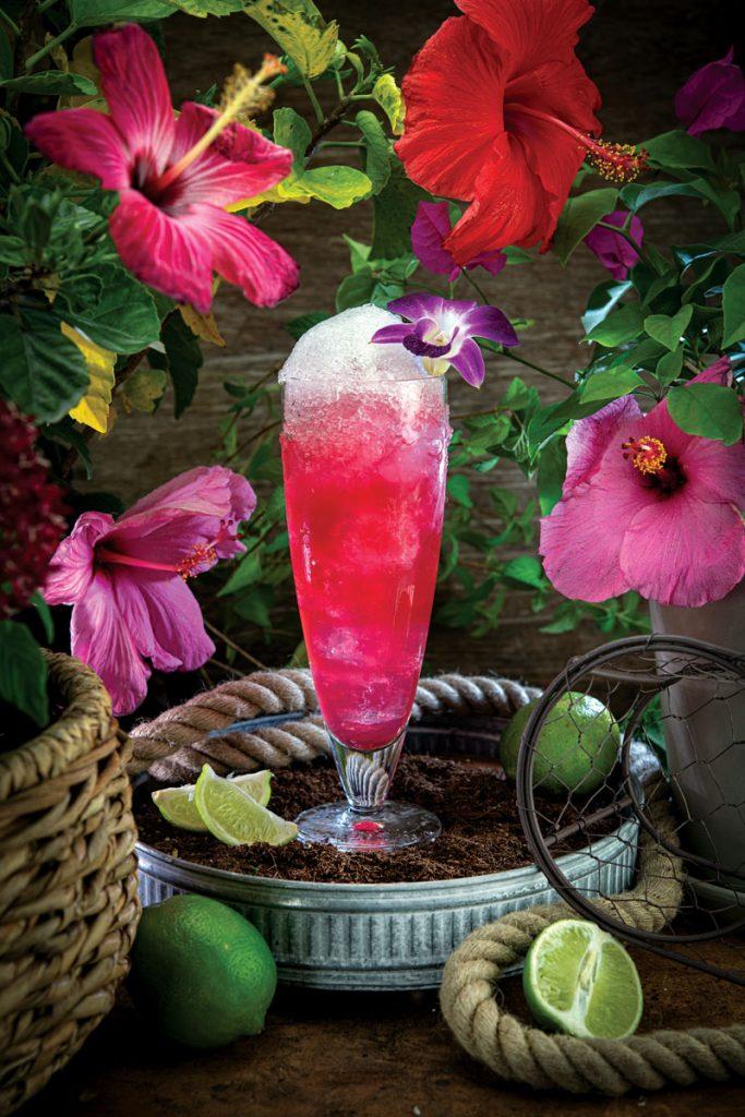 Hibiscus Spiced Margarita