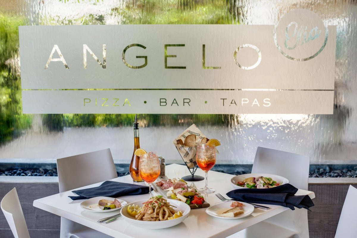 Thanksgiving at Angelo