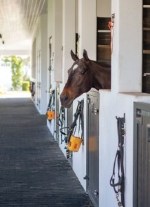Stables for La Indiana's Horses, Photo by Jerry Rabinowitz