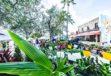 West Palm Beach GreenMarket. Photo courtesy of the City of West Palm Beach