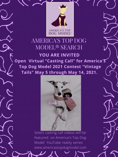 America's Top Dog Model