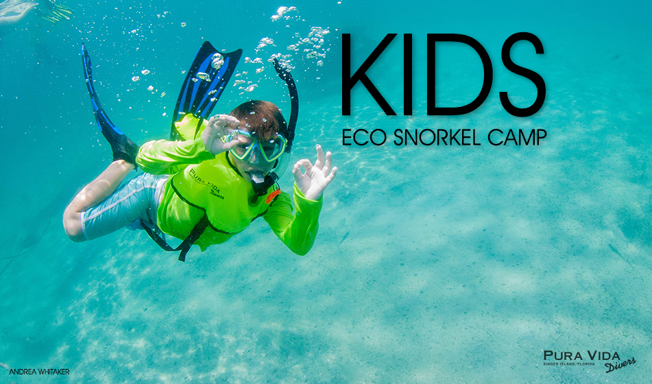 Pura Vida Divers' Eco Snorkel Camp