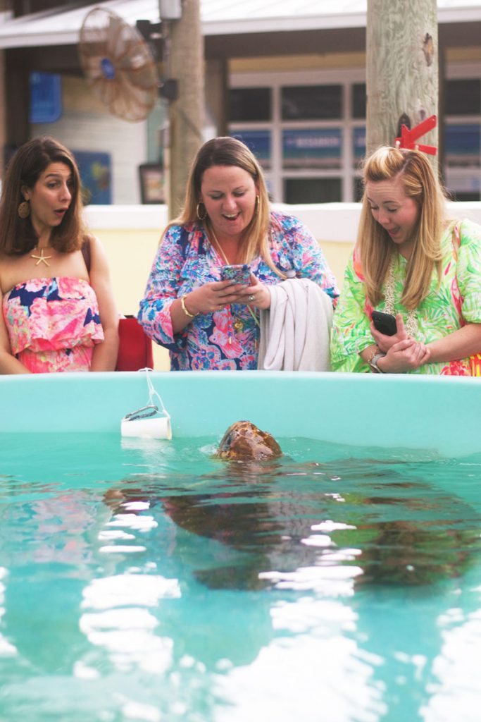 Lilly Pulitzer team visit at the Loggerhead Marinelife Center in Juno Beach. Images courtesy of LMC