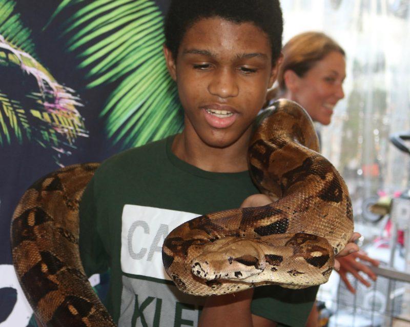 Cool Zoo Exotic Animal Encounters